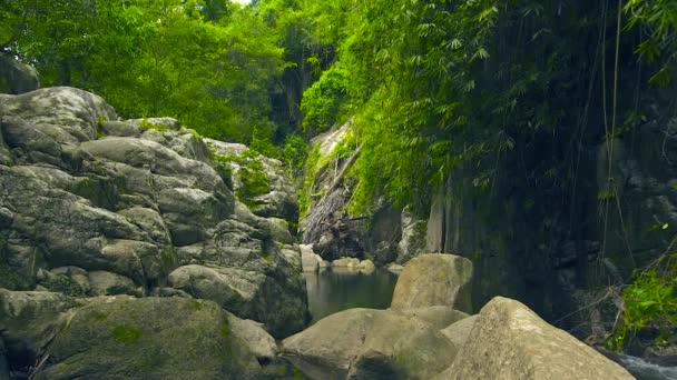 Horská řeka v tropickém pralese. Velké kameny v řece r u horského lesa. Divoké přírody