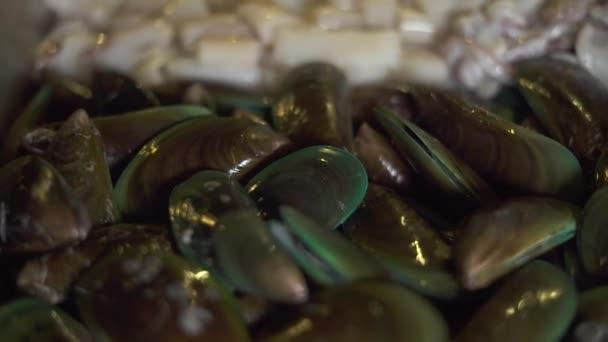 Čerstvé mušle, kalamáry a krevety zblízka. Lahodné mořské plody pro přípravu pokrmů v restauraci nebo domácí kuchyni. Mořské plody desku. Jídlo koncept
