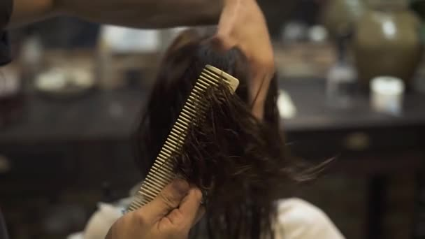 Hairdresser combing wet hair while haircut with barber scissors in beauty studio. Hairstylist using scissors and comb cutting hair in hairdressing salon. Professsional female haircut and hairstyling.