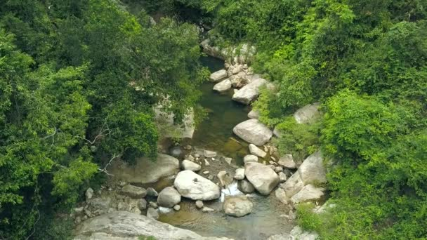 Rocky river flowing in green rainforest aerial view. Mountan river flow in tropical forest. Drone view water stream in stony creek among green trees and plants.