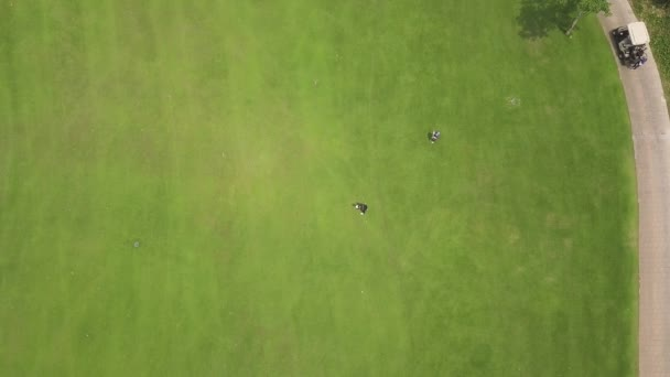 Golfer playing in golf on green course top view from flying drone. Aerial view people playing on green field in golf club. Sport and hobbies concept.