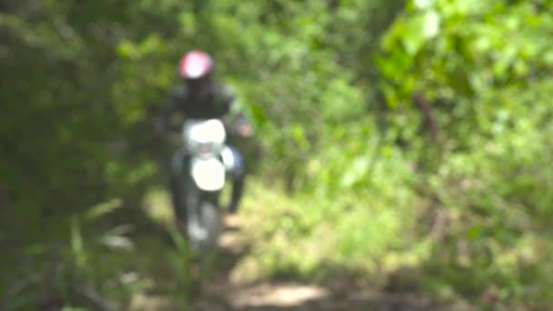 Motocyklista jezdí na motocykl v letním lese. Na lesní cestě uzavřete kolo motorového kola. Moto motorker na motorce. Cestování po motorce.