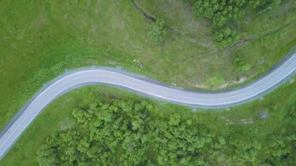 Letecký pohled na dva lane lesní cesta s auta náklaďáky. Filmový dron natočili létající přes silnici do borového lesa
