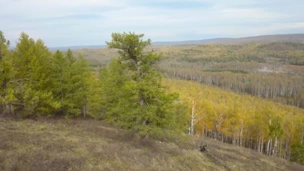 Letecký pohled na záběry Drone: Letu nad podzimní hory s lesy, louky a kopce v západu slunce měkké světlo. Karpaty, Ukrajina, Evropa. Majestátní krajinu. Kosmetický svět