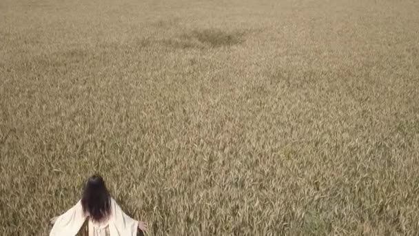 Aerial - Flyover young woman in white dress walking in yellow wheat field