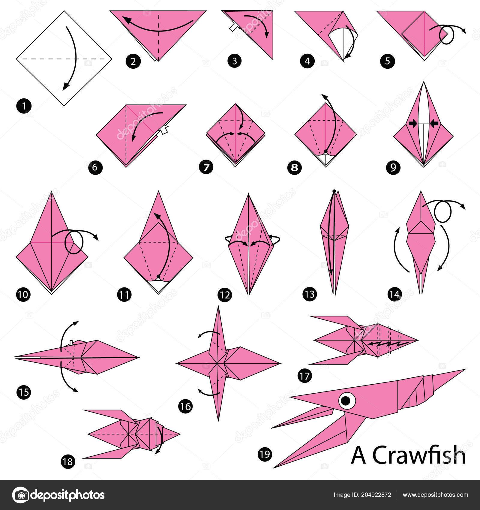 Istruzioni Passo Passo Come Fare Origami Pesce Craw Vettoriali