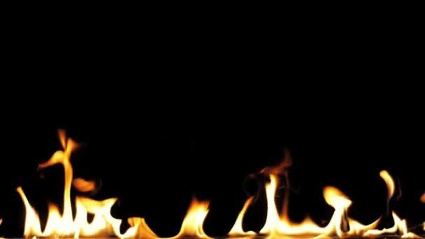 Palbu plameny, zapálení a hoření - pomalý pohyb. Řadu opravdových plamenů vznítit na černém pozadí. Bude vypadat skvěle v jakékoliv ohně nebo grilu projekt. Skutečný oheň.