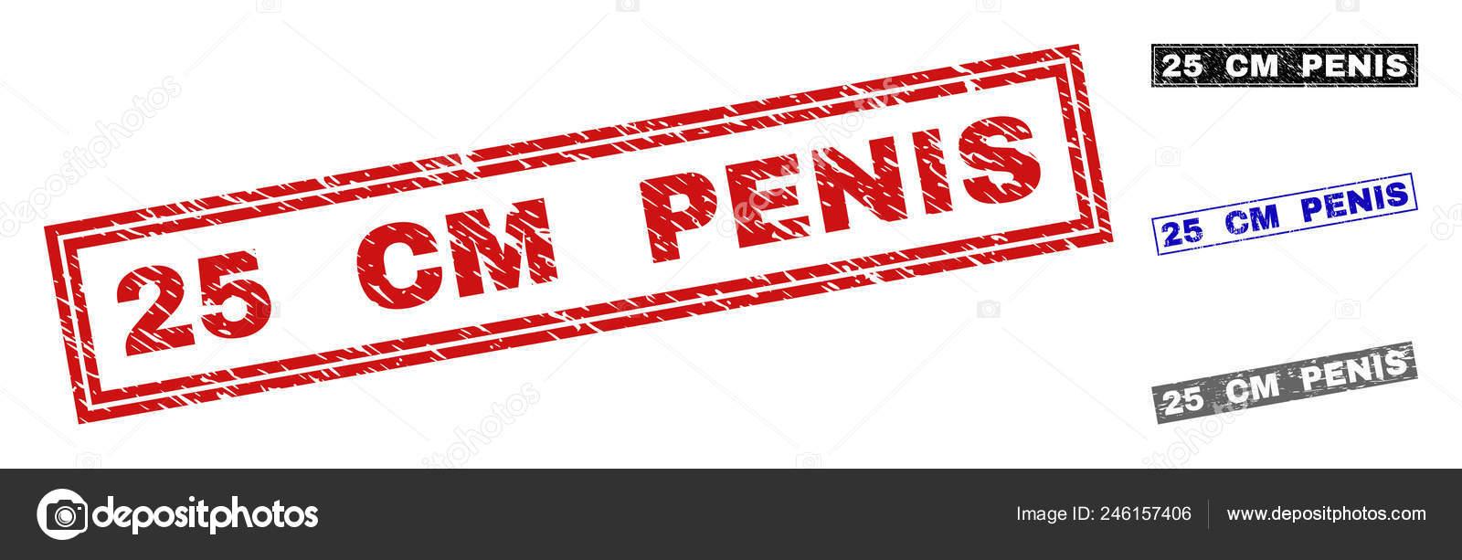 atașament penis 25 cm