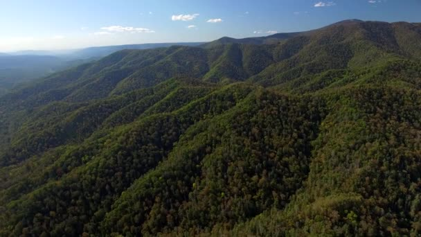 Great high mountains peaks covered green forest. Overall plan nature  untouched wild landscape mountainousOpen space. Autumn blue sky clouds Travel tourism vastness freedom. Russia Asia. Aerial Drone