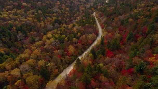 Anténa z nad malebná silnice mezi barevné lesní podzimní sezóny. Auto jede rychle prach pod kola. Hory a kopce. Logistický závod cesta. DRONY shora