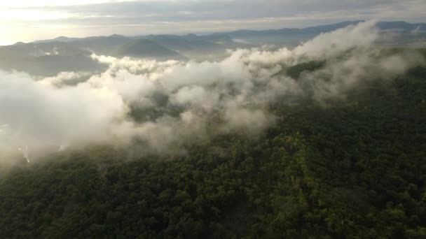 Vysoké nadmořské výšce Drone vpřed krásné horské scenérie mraky páry kouře ranní slunce. Zelené lesní stromy pokrývají svahy. Mystický pohled přírody divoká nedotčená. Brilantní meandrující řeka