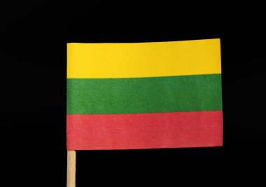 A tricolour national flag of Lithuania on toothpick on black background. A horizontal triband of yellow, green and red.