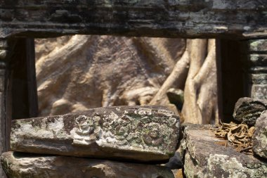Carved floral bas-relief on stone ruin. Angkor Wat complex temple, Siem Reap, Cambodia. Temple ruin and tree. Ancient khmer architecture demolished. Asian travel tourism and historical sightseeing
