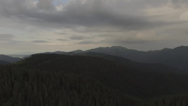 Let zpět nad lesem Karpat. Malé pěší tábor mezi velké smrky. Hory na obzoru. Letecký pohled
