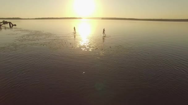 Flight above the big river. Two friends sail on a SUP boards in a rays of rising sun. Backlight. Aerial view. Slow motion