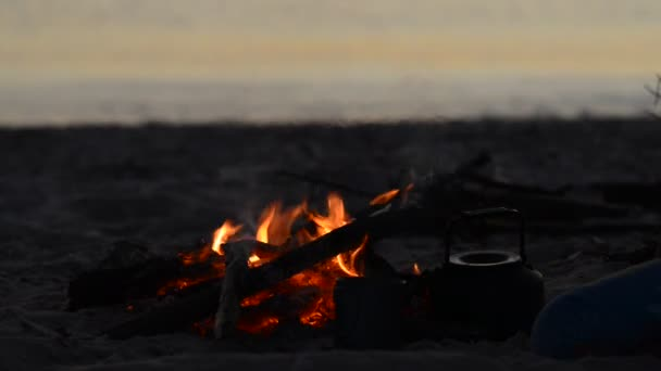 Traveler throws firewood on the bonfire on the beach during sunset. Amazing travel to the seashore.