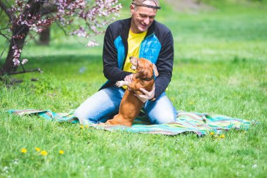 Joyful man plays with his funny dog, dachshund, on the green meadow under a wild blooming cherry, sakura and having fun on a awesome spring day.
