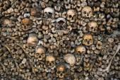 Crani umani formano un cuore allinterno delle Catacombe di Parigi