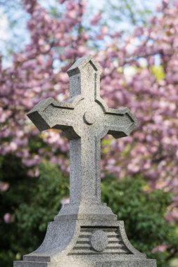 Cross with the background of Pink Cherry flowers in the Montmartre Cemetery