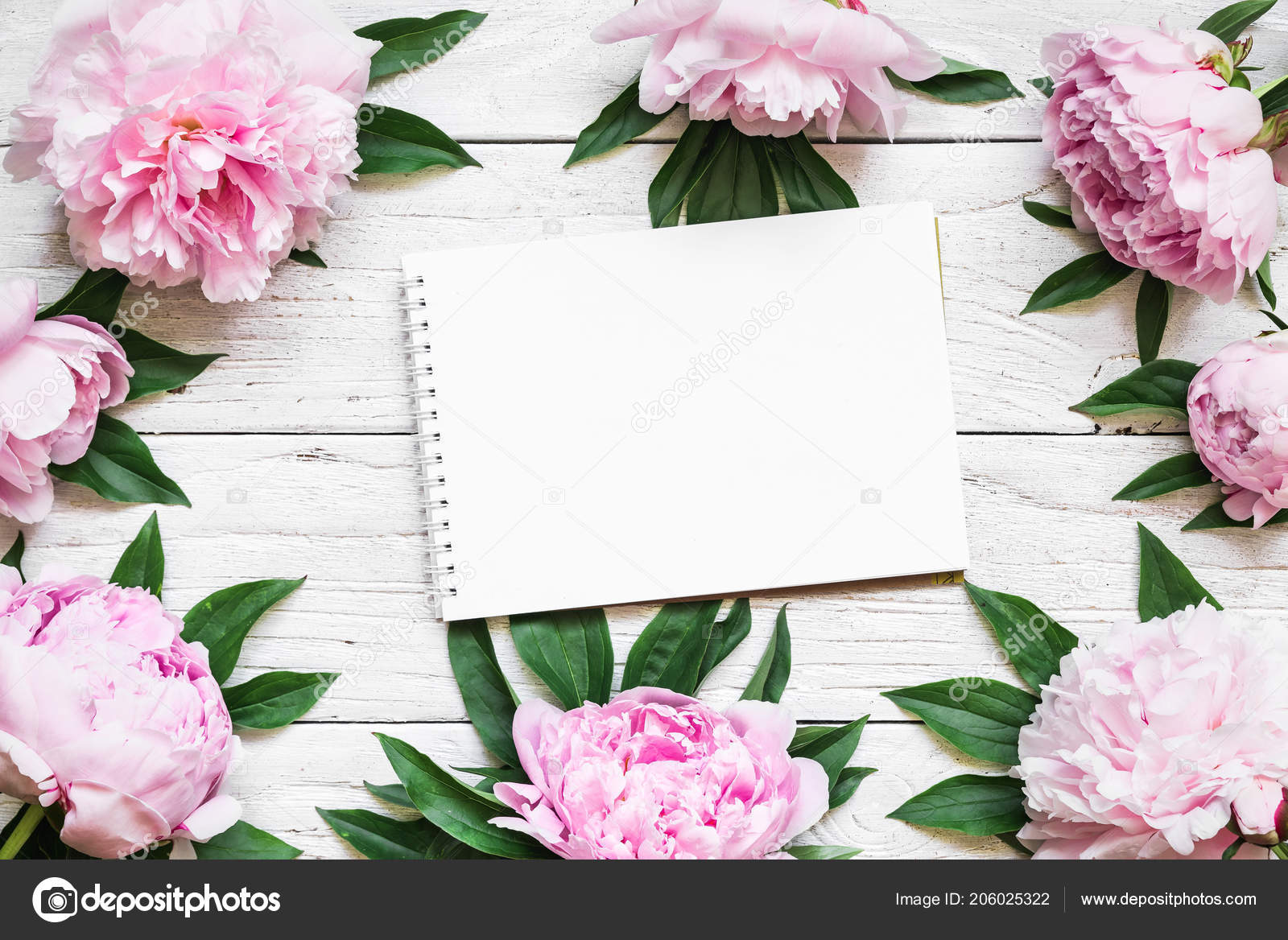 Blank Greeting Card Frame Made Pink Peony Flowers White Wooden