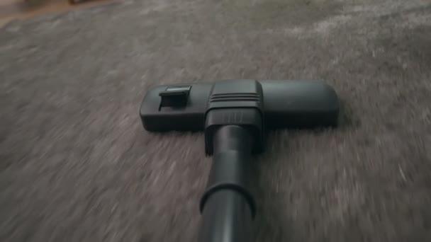 Staubsauger saugt Teppich ab