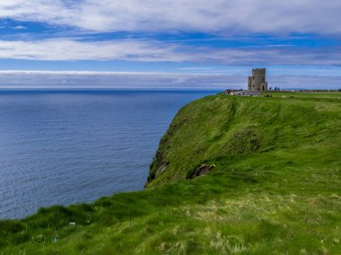 The green grass and nature at the Cliffs of Moher in Ireland
