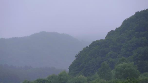 Japonci vrchoviny v okolí hory Fudži v mlze