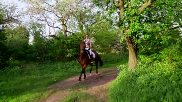 spring, outdoors, girl rider, jockey riding on thoroughbred beautiful brown stallion, through old blossoming apple orchard. horse running in blooming garden. stedicam shot