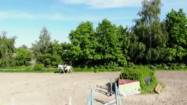 view from above, aerial video shooting, training sand field, playground, riders, jockeys ride horses, perform various exercises with horses, next to barriers. summer, outdoors,