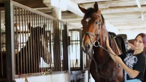 ve stáji ženy jezdec stojí poblíž hnědé pohledný mladý kůň, plnokrevný hřebec. Ona ho pohladí, políbí ho do tváře