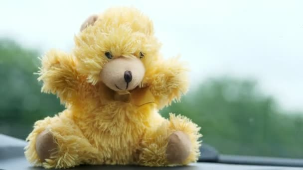 close-up, of a childrens toy bear in front of a windshield. rain, work of car wipers, Windshield wipers from inside of car, Car wiper cleaning rain drop on glass
