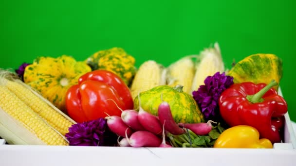 detail, bílá dřevěná krabice s sklizeň, různé čerstvá zelenina, kukuřice, paprika, ředkvičky, cukety, patissons. na zeleném pozadí, ve studiu, zdravé jídlo na váš stůl, zdravá výživa
