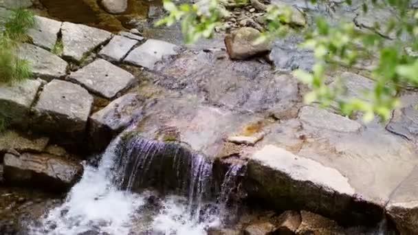 vodopád, malé horské alpské potok, řeka. jasné, čisté, pitné vody. letní den, v lese, v horách, Alpy