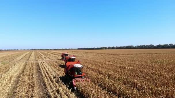 Letecký pohled shora. tři velké červené spojit kombajn stroje sklizeň kukuřičného pole počátkem podzimu. traktory, filtrování čerstvé lopuchem z listů a stonků. Letecká zemědělství