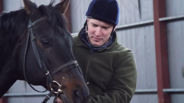 detail, ve stáji, muž tahy tlamy koně, čistokrevný, černá