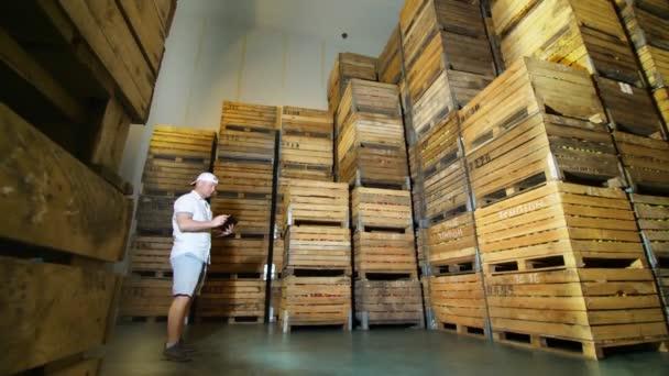 skladování jablek. skladiště. hromádky dřevěných beden s jablky v obrovské chladicí kameře bez vzduchu. zaměstnanec s digitálním tabletem pracující ve skladu. sklizeň jablek