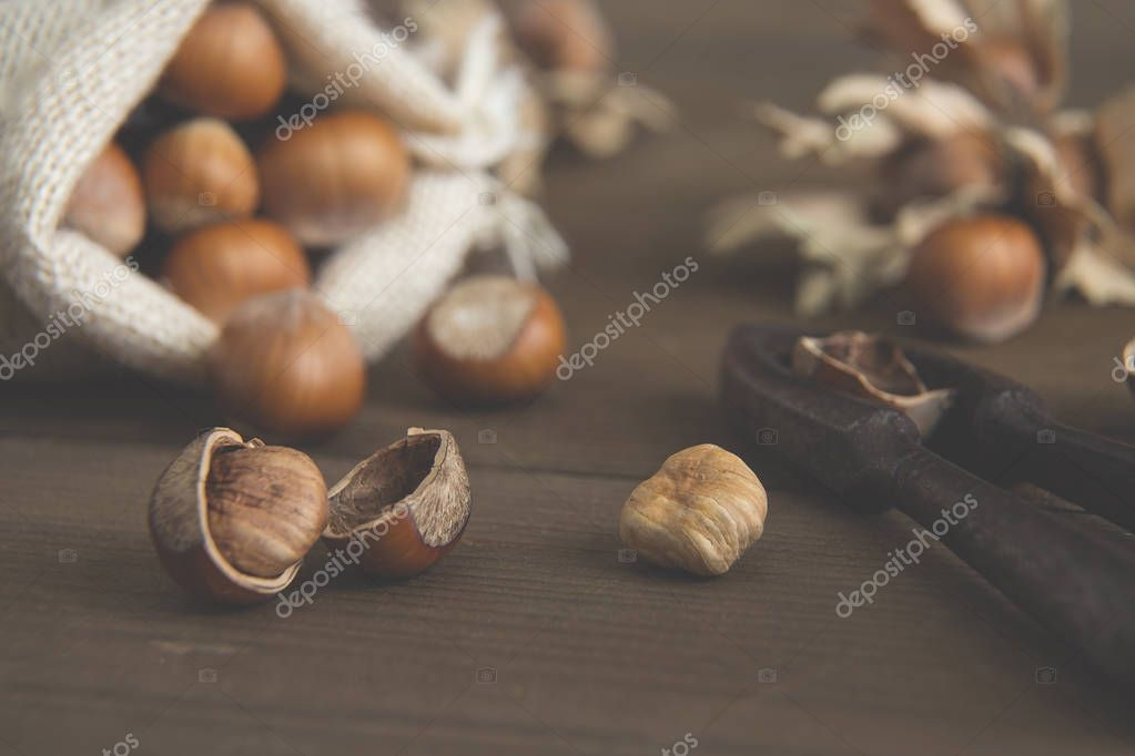 Table with whole and shelled hazelnuts, old nutcracker and jute sack