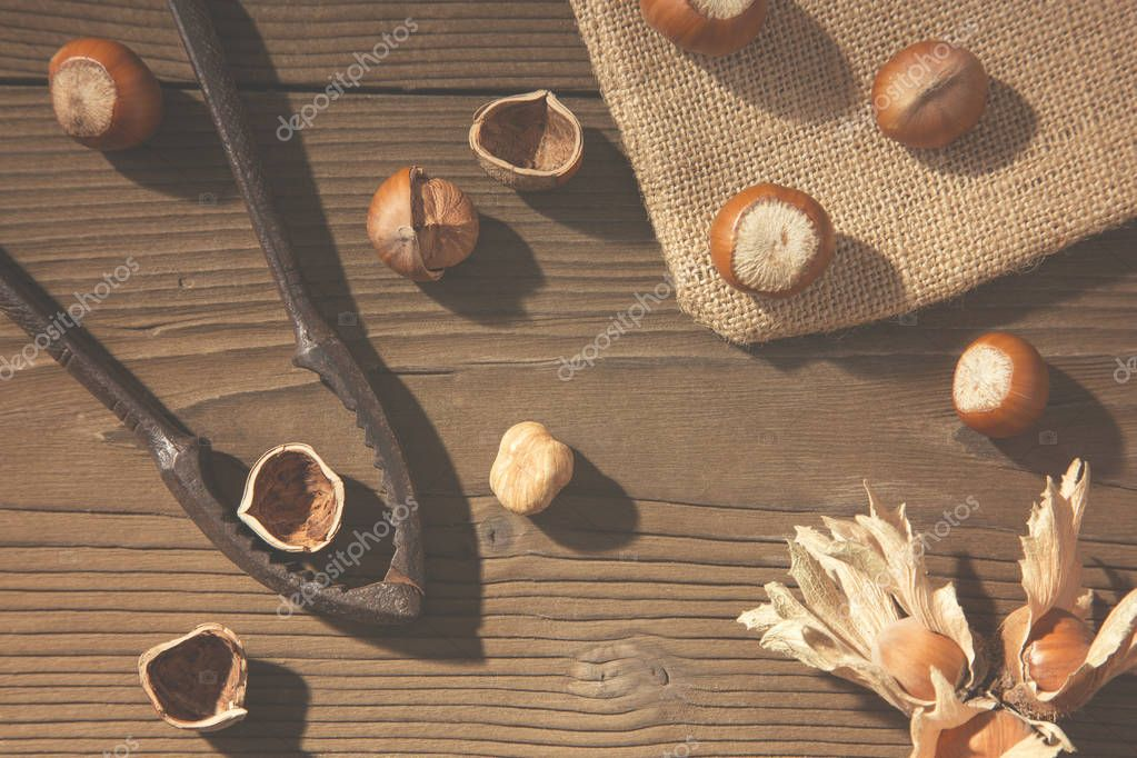 Aerial view of a table with whole and shelled hazelnuts, old nutcracker and jute sack