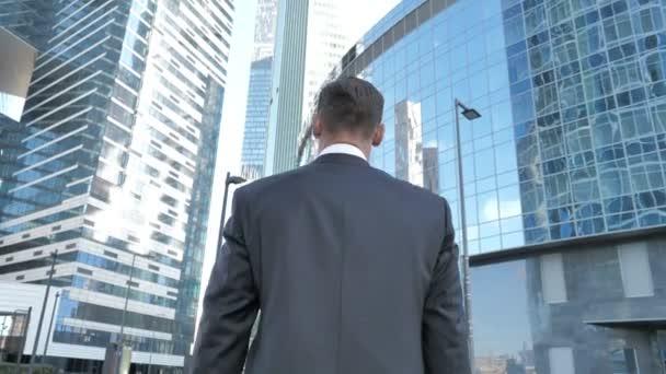 Walking Businessman, Back view
