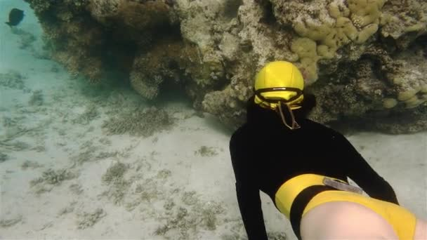 Freitauchermädchen im gelben Bikini schwimmt in Korallen