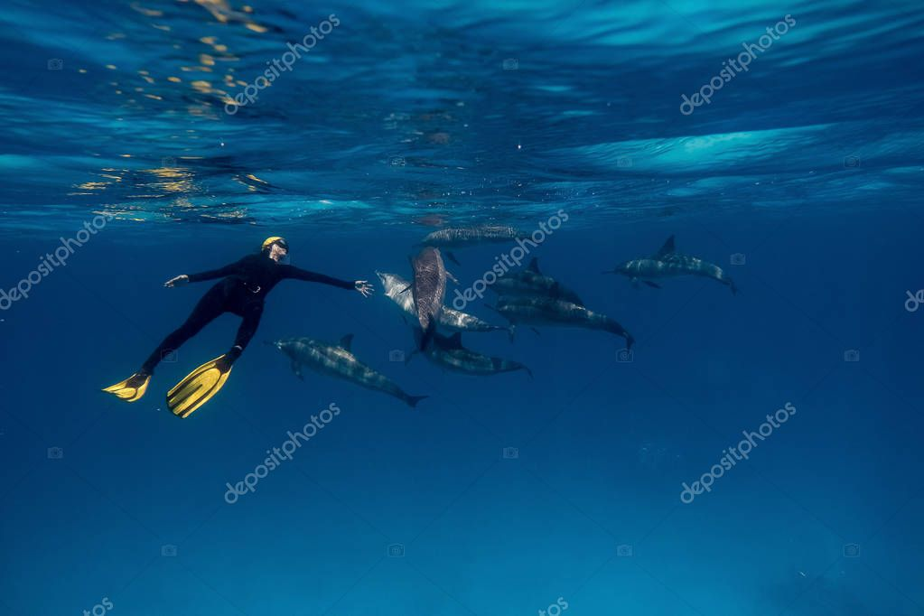 Girl freediver together with dolphins in Red sea