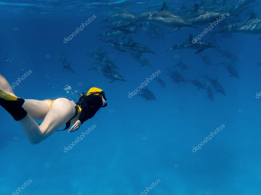 Girl freediver watching dolphins in Red sea