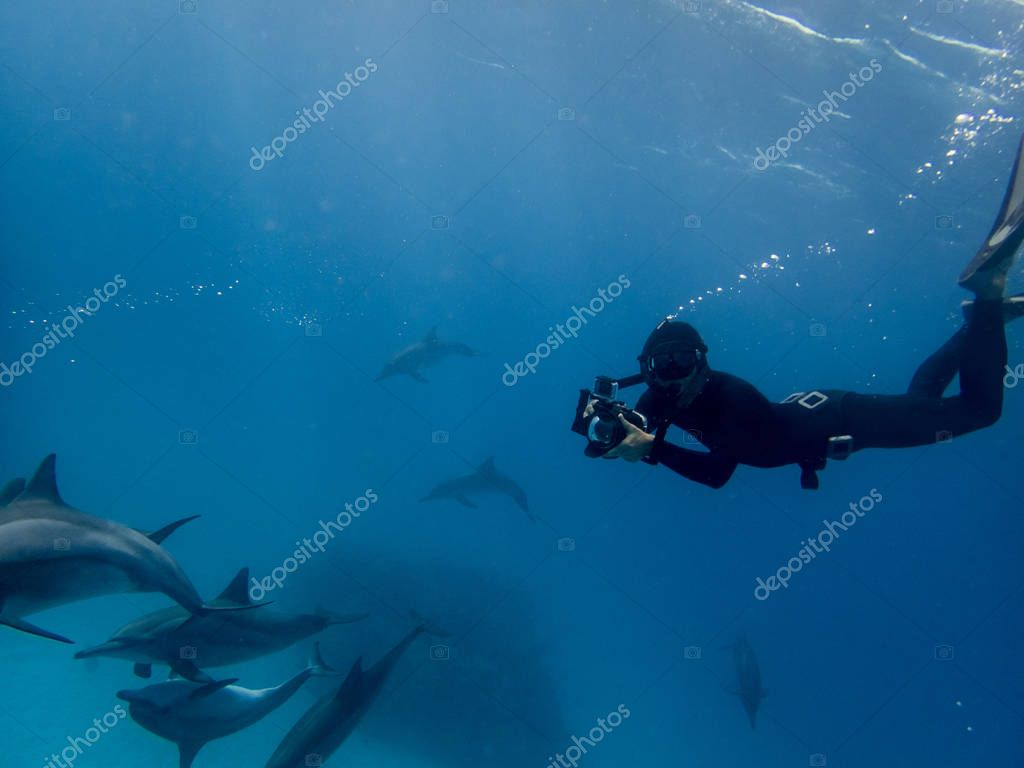 A freediver recording dolphins in Red sea