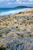 Fotografie Beautiful Mediterranean sea coast in Sardinia, Italy, Europe