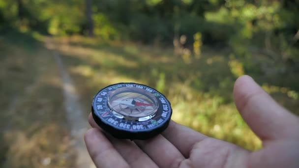 compass in the hands of the forwarder of the forest background