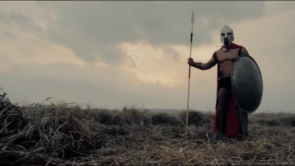 Spartaner posiert mit Speer im Feld.