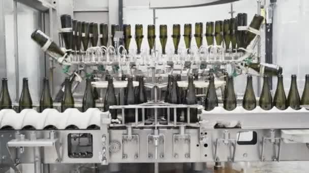 Glasflaschen auf der automatischen Förderlinie in der Champagner- oder Weinfabrik. Anlage zur Abfüllung alkoholischer Getränke.
