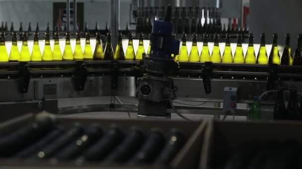 Flaschen mit Alkohol bewegen sich über automatisches Förderband, Qualitätskontrolle in der Champagnerfabrik