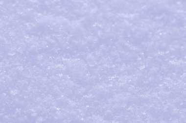Snow shined with sun. Abstract snow texture. Beautiful abstract snow background