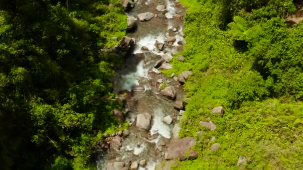 Mountain river in the rainforest, Philippines, Camiguin.